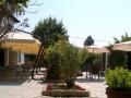 BB_garden.jpg